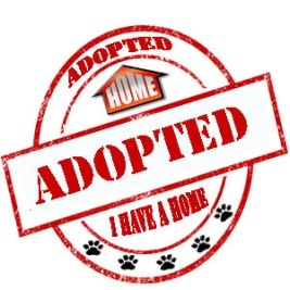 Adopted, EHS, Animal Control Carlsbad