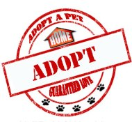 Adopt Escondido Humane Society